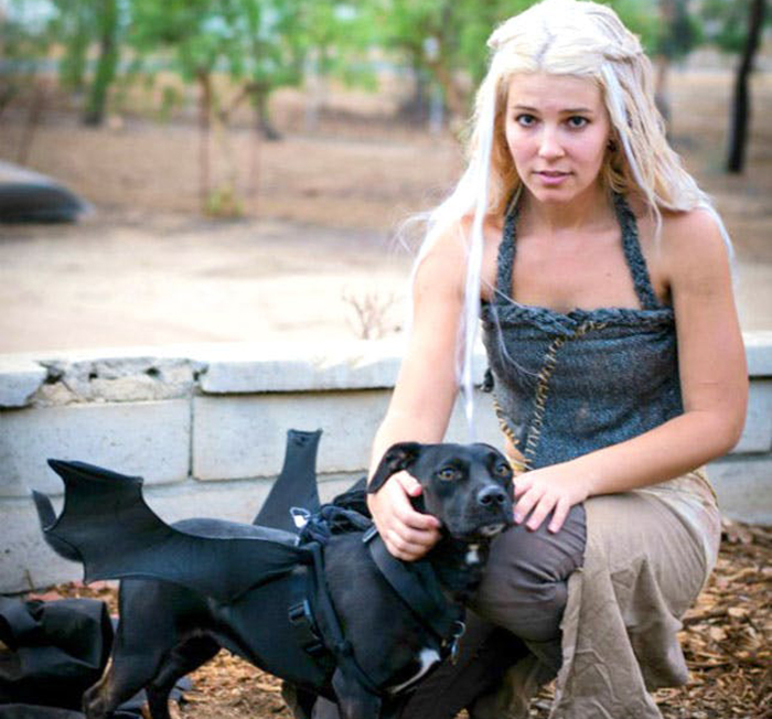 Daenerys costume with dog as dragon