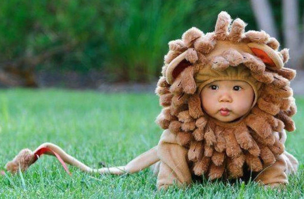 Baby in lion costume