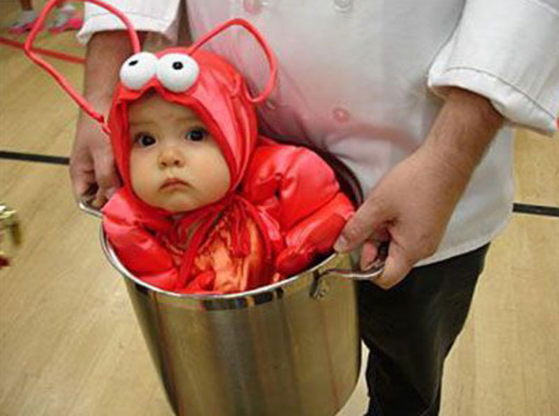 lobster in pot costume