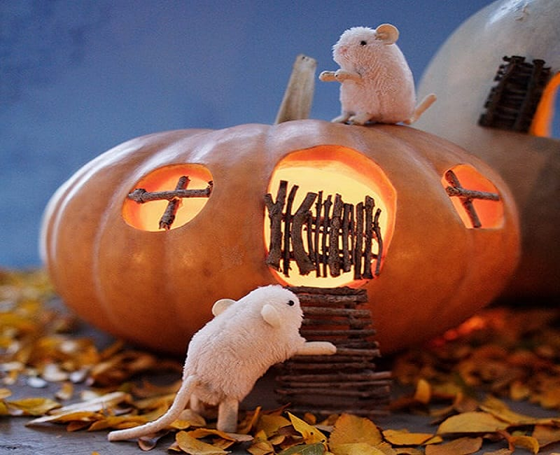 A pumpkin is carved to look like a house and has two toy mice on it.