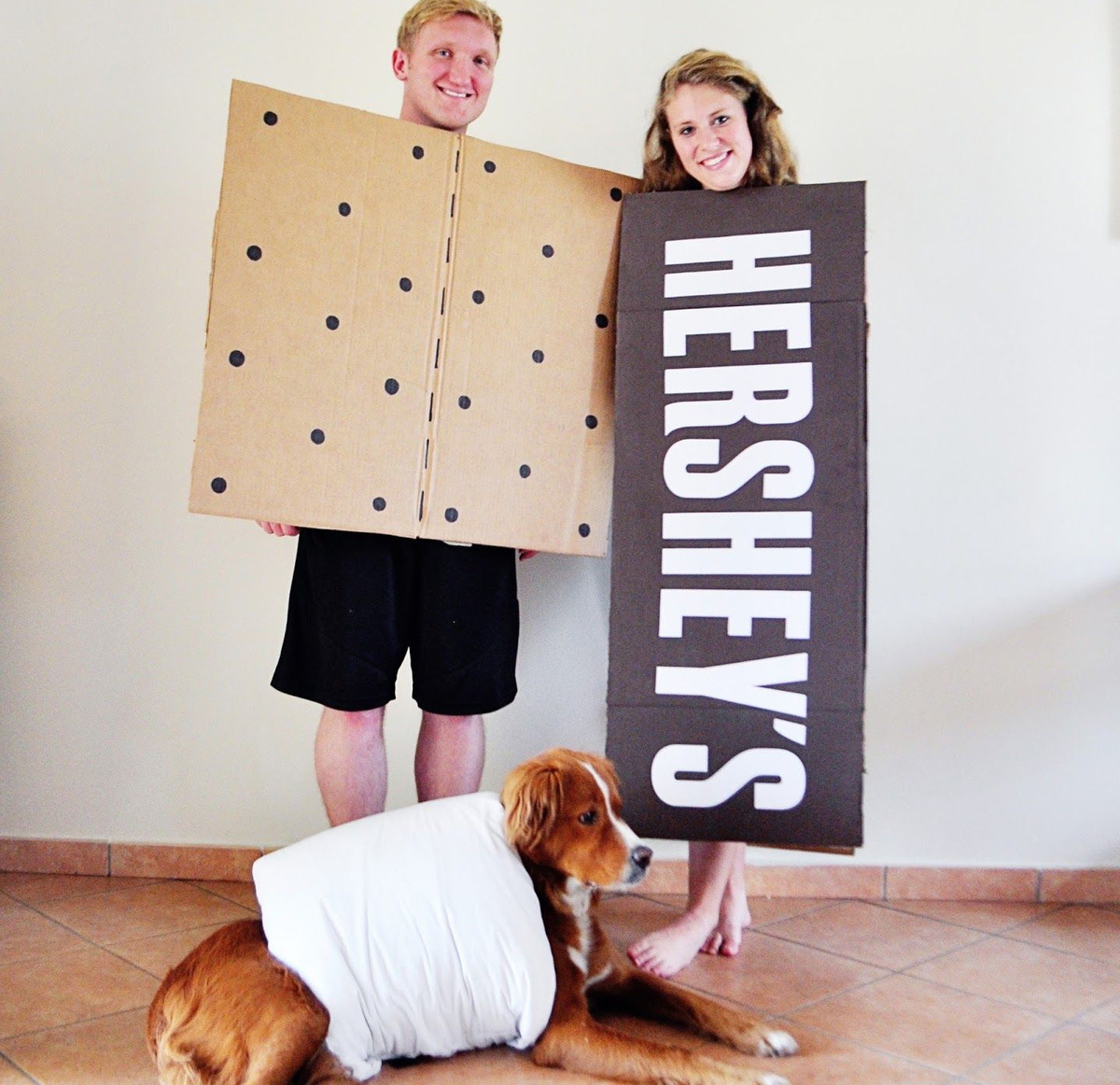 Couple dresses in a s'mores costume with dog