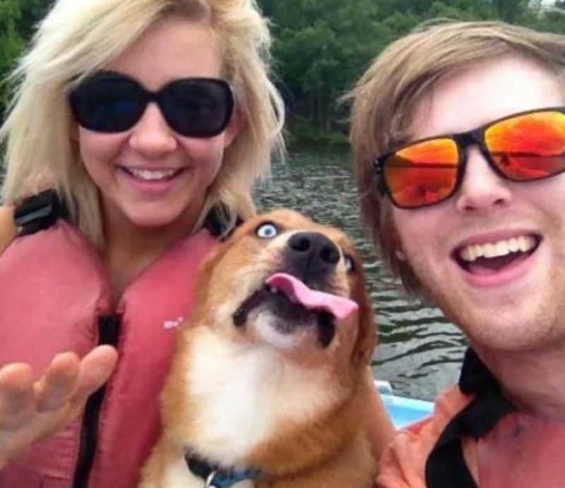 This Dog Did Not Appreciate The Camera Interrupting His Day On The Water