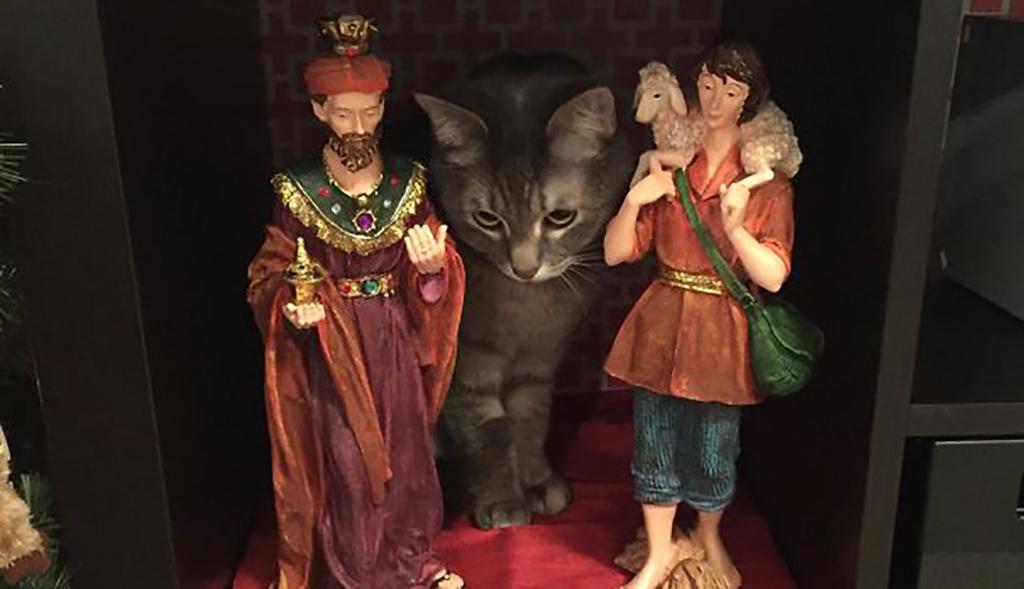Cat hiding behind figurines