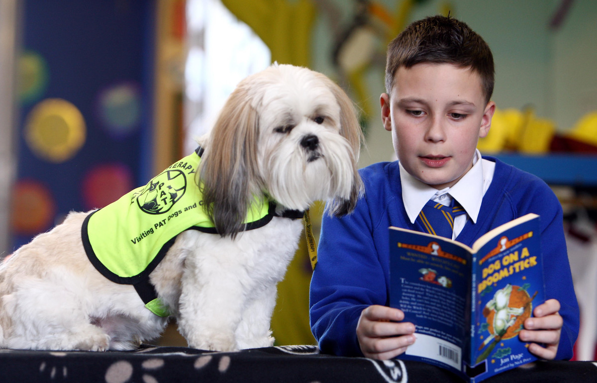 Muffin the Lhasa Apso listens as 10 year old Keegan Hill reads.