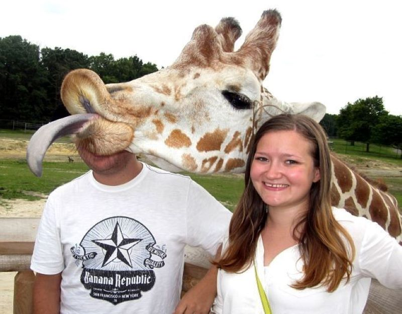 The Giraffe Decided He Wanted To Be Her New Boyfriend