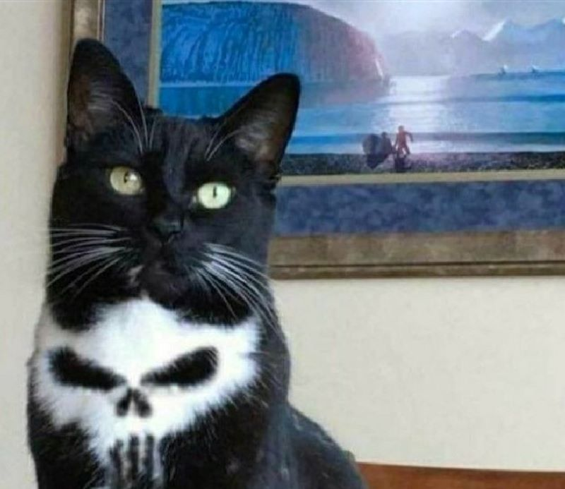 The Punisher's Number One Fan