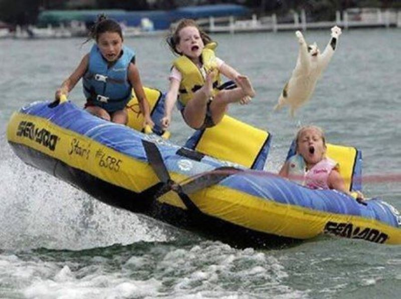 Quick, Get The Cat, We're Going Tubing
