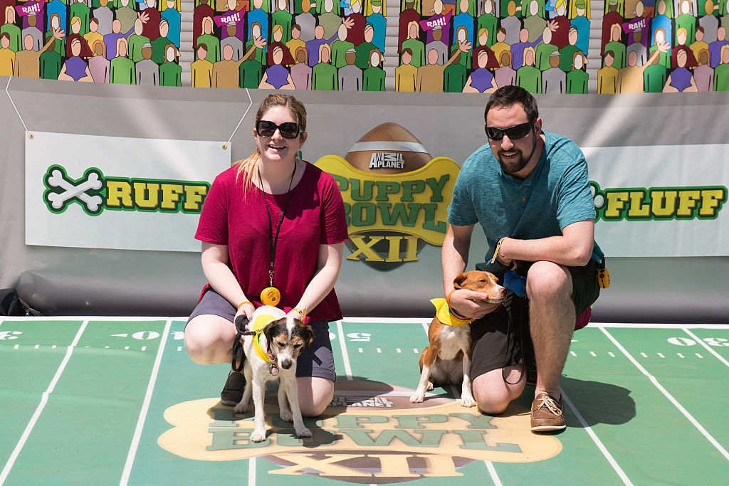 puppies and humans before the puppy bowl