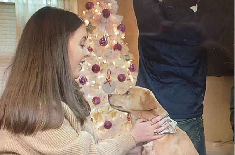 Emily Jokinen pets her dog, Suzy.