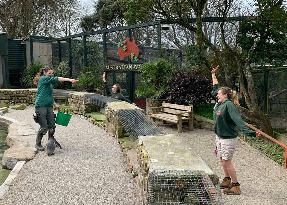 three zookeepers having fun at paradise park