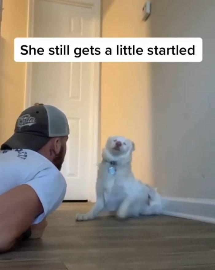 she still gets a little startled