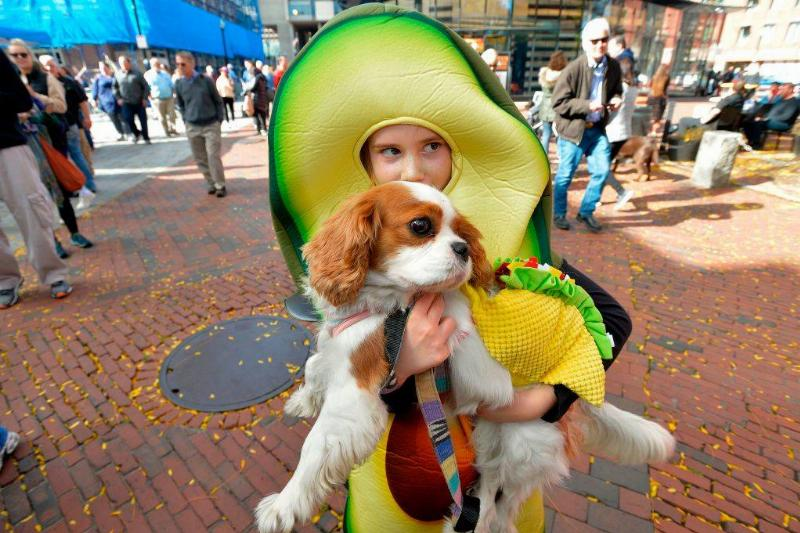 a girl in an avocado costume holding up her puppy in a taco costume