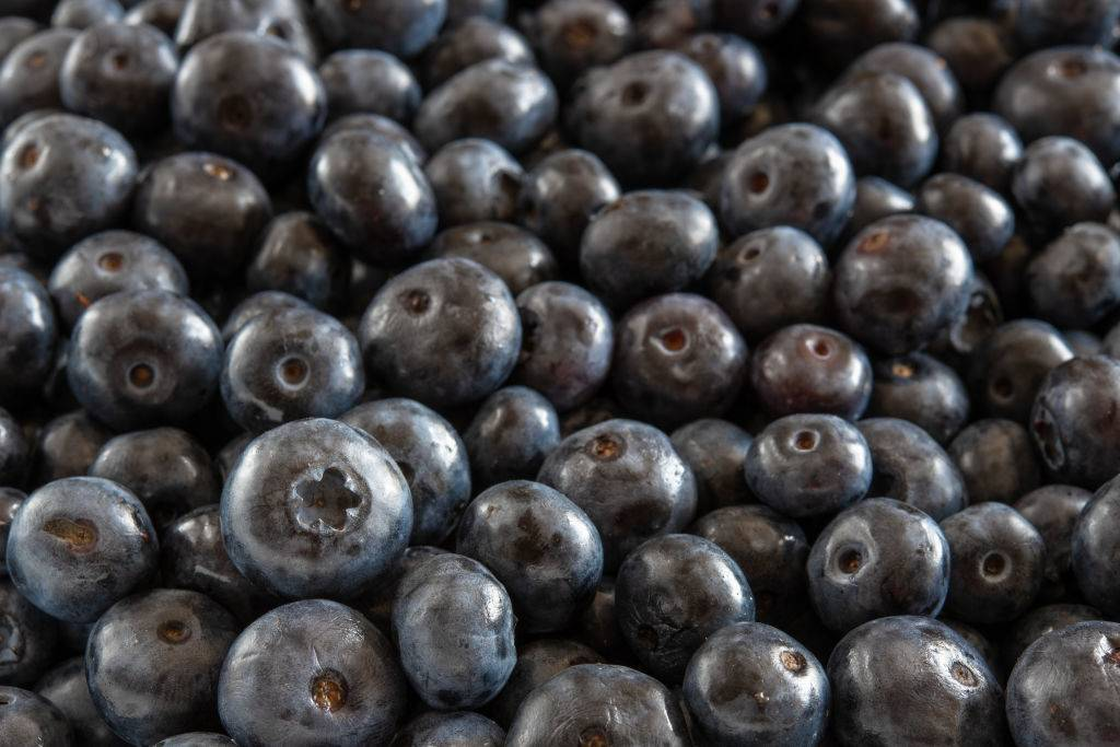 close-up of a pile of blueberries