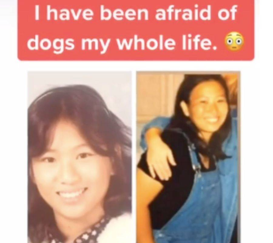 i have been afraid of dogs my whole life