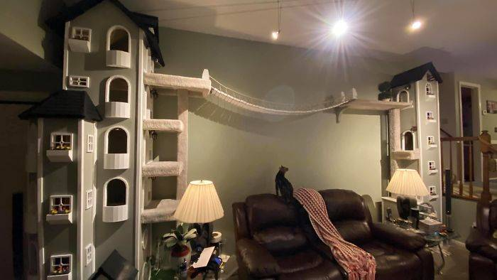 two kitty towers with a bridge over the couch