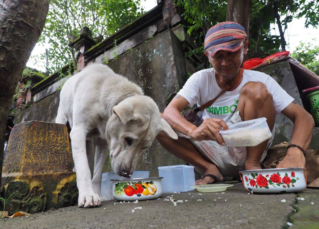 a man feeding a stray dog some rice