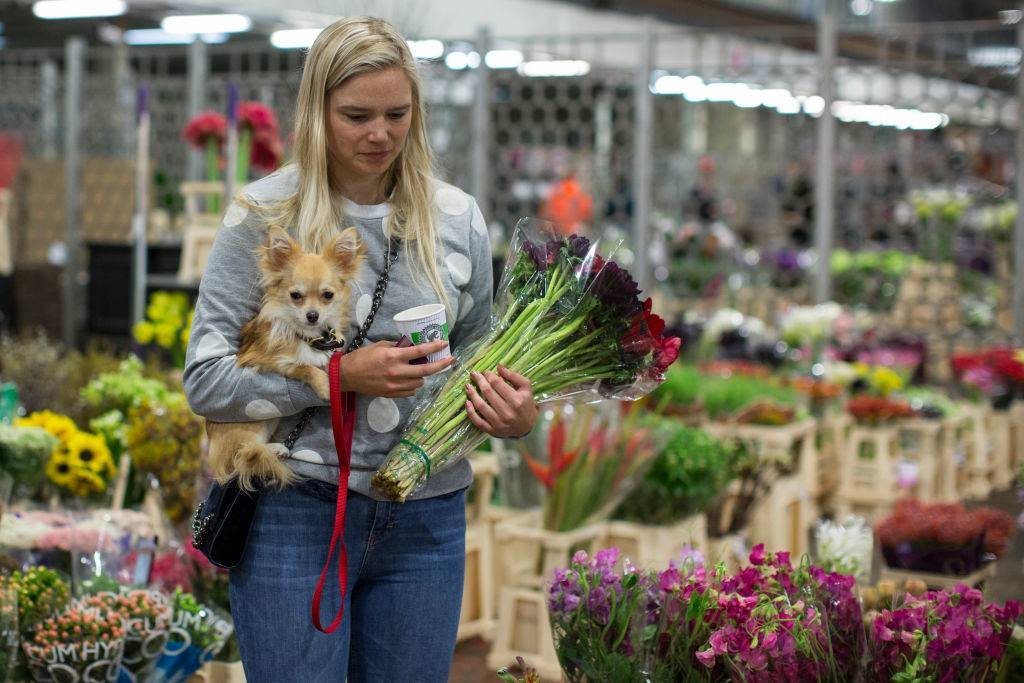 A woman holds a dog as she picks flowers