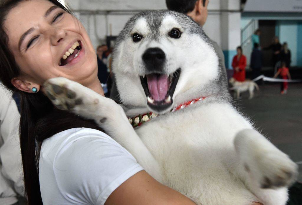 A woman smiles as she holds her Husky