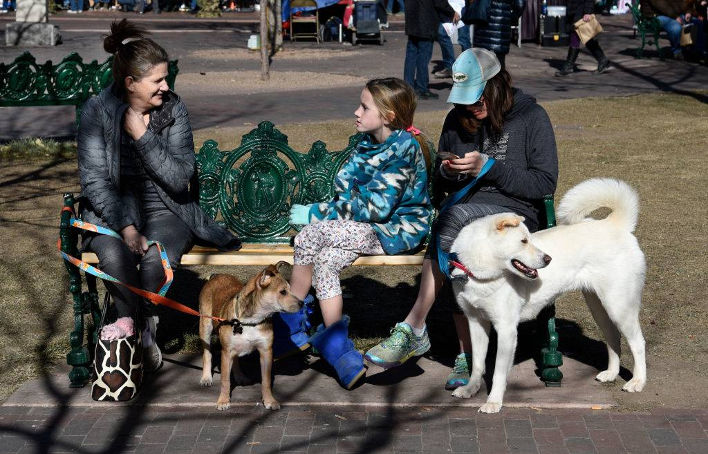 Dog owners sit with their pets on a bench