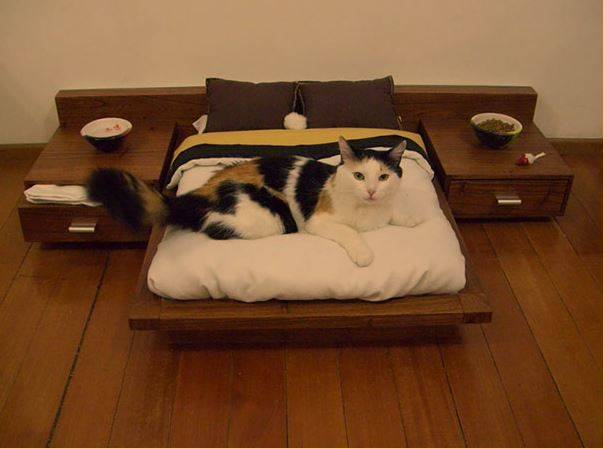 A cat lays on a miniature bed with two side tables.