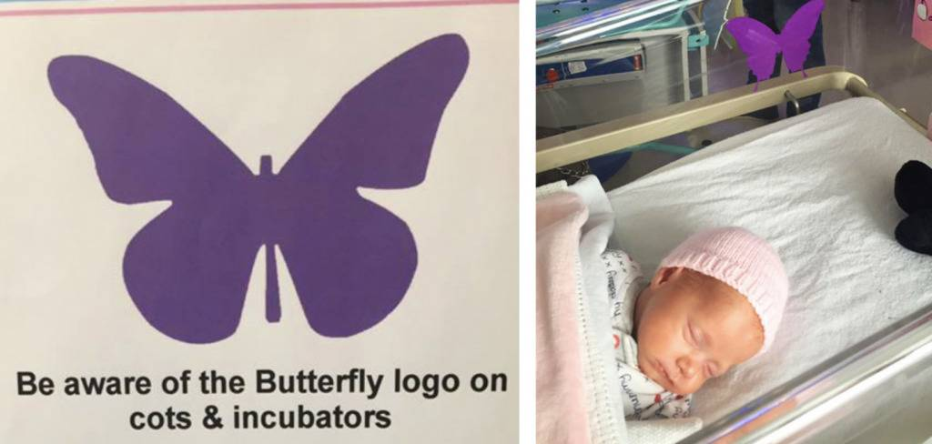 A purple butterfly poster is next to a baby.