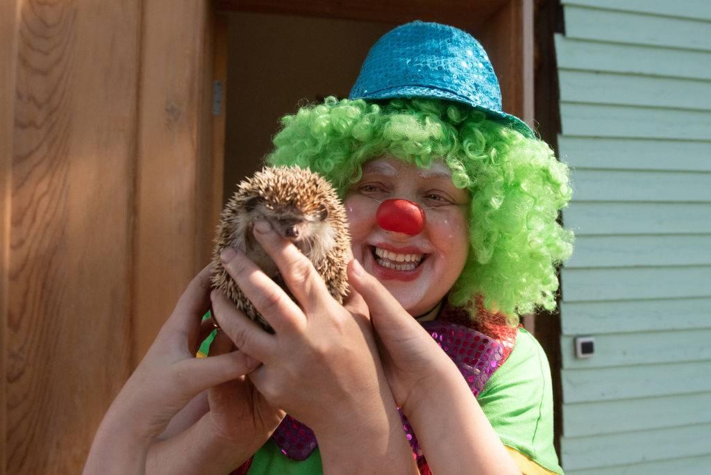 a woman dressed as a clown holding a hedgehog