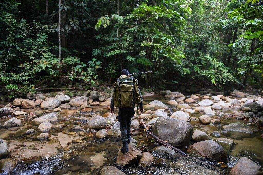 A man walks across a creek in the woods.
