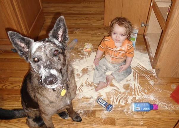 toddler14-49253.jpg