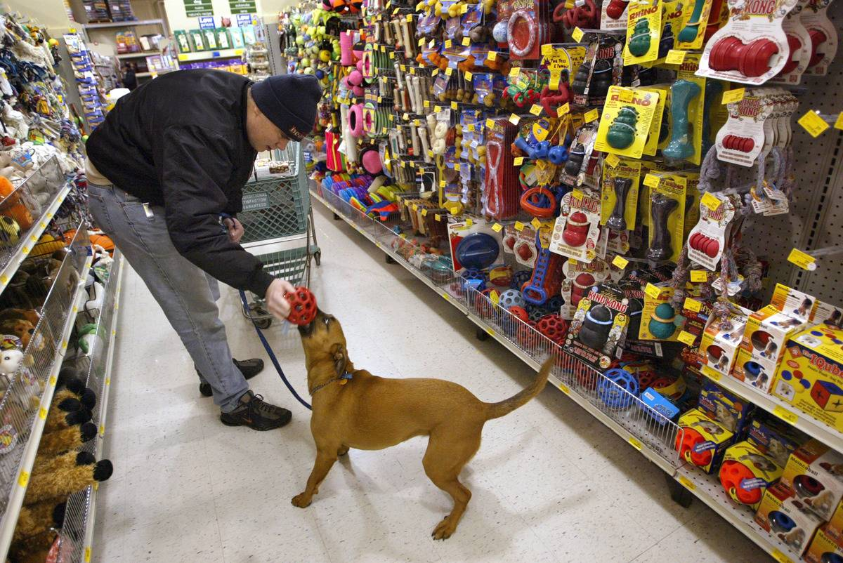 A man plays with his dog at a pet store.