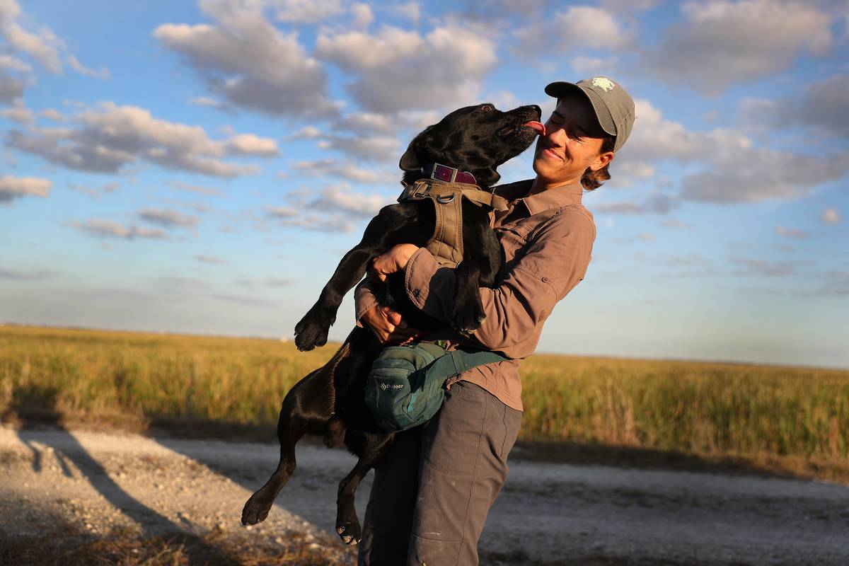 Dogs Have A Powerful Emotional Bond With Humans