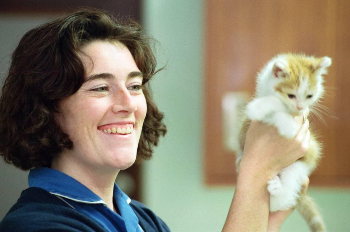 A vet holds up a kitten.
