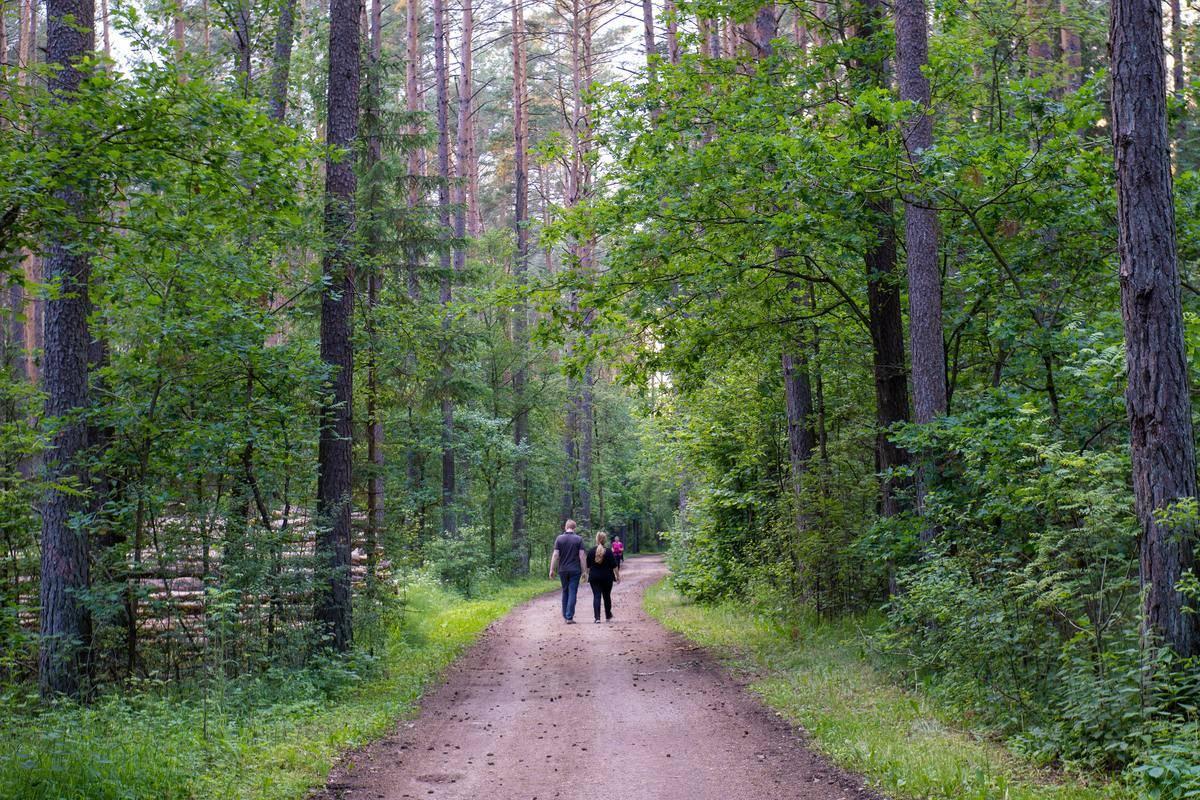 walking-trail
