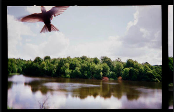 Viggo Mortensen's Photography Appears In His Films
