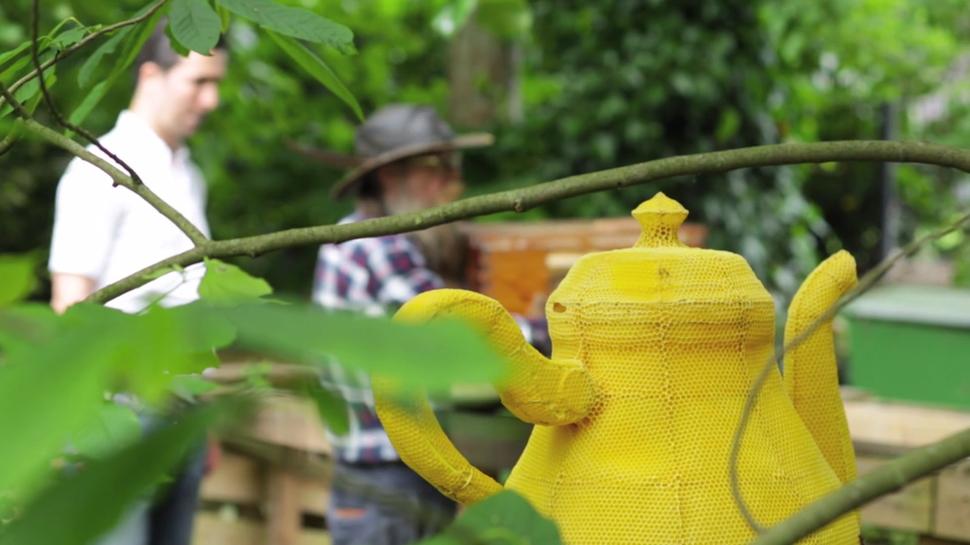 Amazing Honeybees Create Teapot