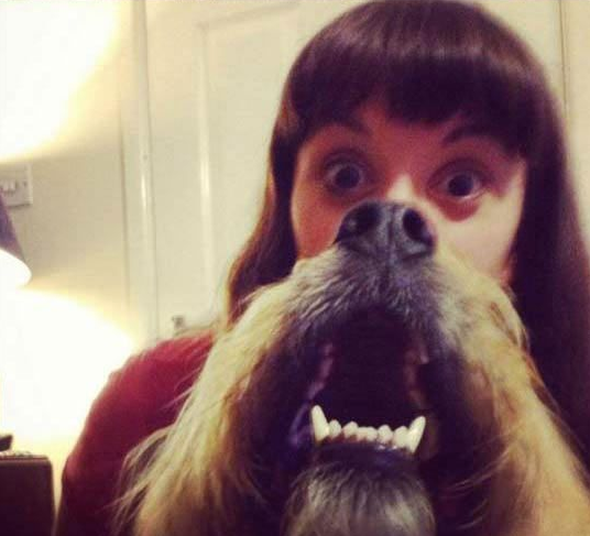 Amazon Human Dog Beard