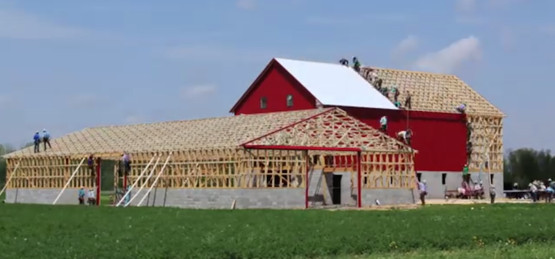 Amish Barn Raising