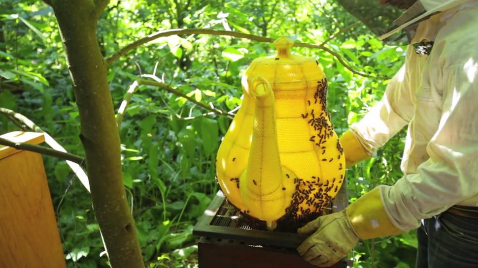 Awesome Honeybee Tea Pot