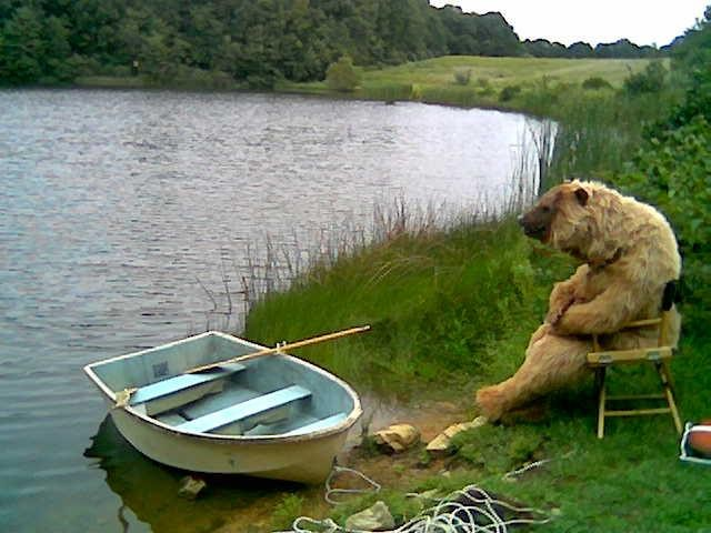 Bear Relaxing in a chair by the lake