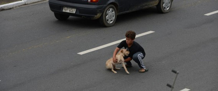 Young Man Runs Into Traffic To Save His Dog