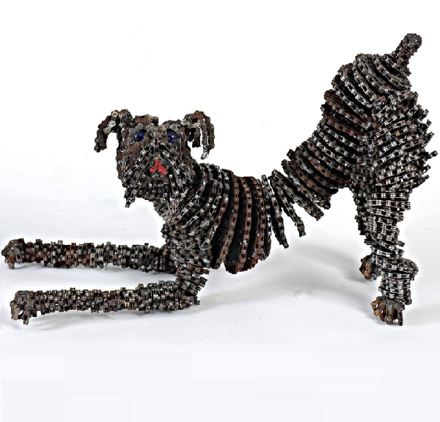 Cool unchained dog work