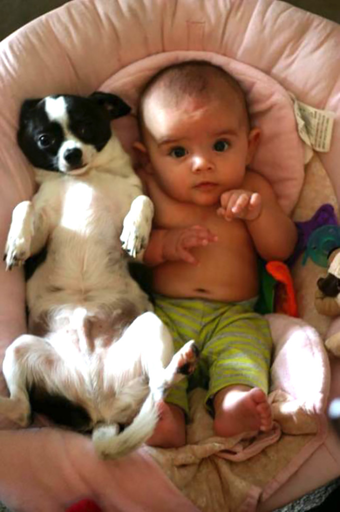 These Dogs Cuddle With Babies And Its Absolutely Perfect - 30 cutest pictures ever babies posing animals