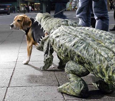 These 30 Halloween Dog Costumes Will Put A Smile On Your Face ...