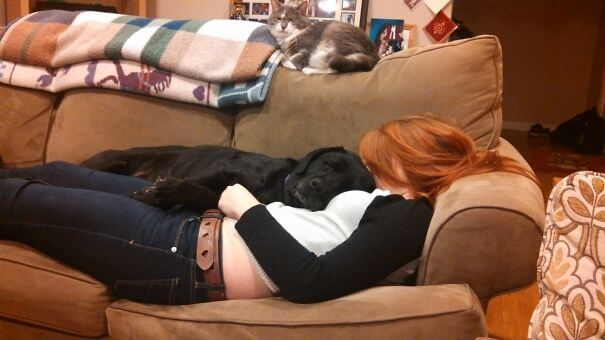 Dog Likes My Girlfriend.jpg