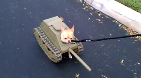 Dog Tank Costume for Halloween