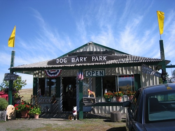 Dog Themes Bed and Breakfast - Front Office