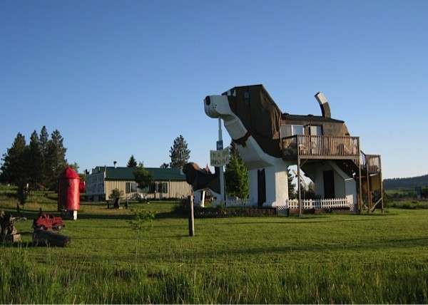 Dog Themes Bed and Breakfast