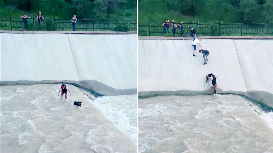 A Human Chain, A Dam, And A Dog