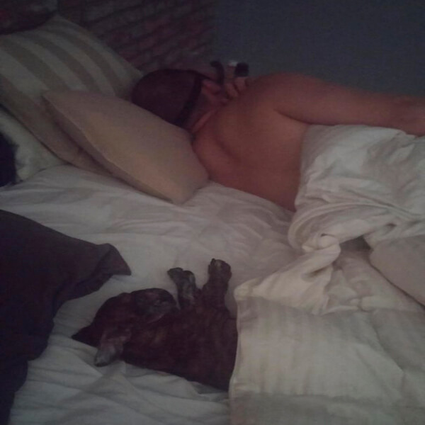 Dog and Owner laying in bed in the same post.jpg