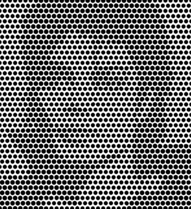 Face in the dots optical illusion