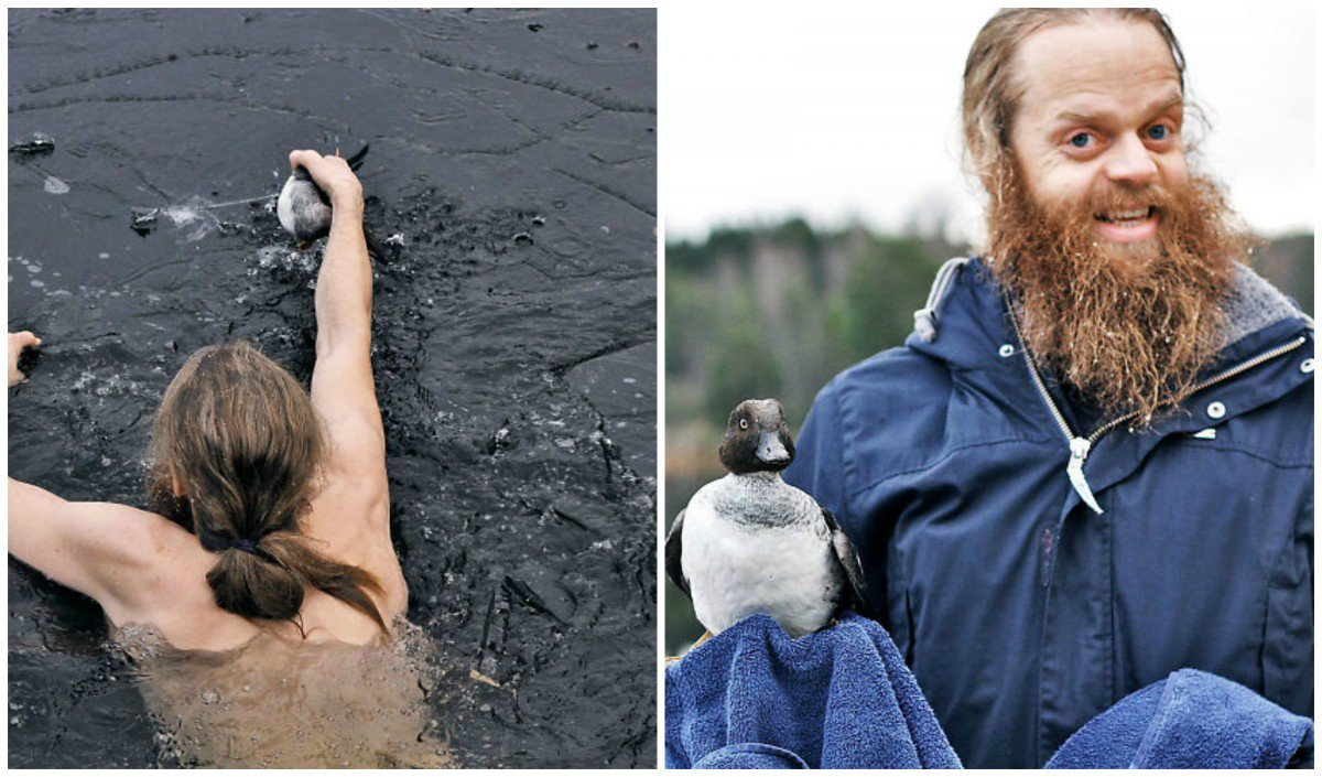 This Man Jumped Into Froze Lake To Save A Bird